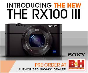 Купить фотоаппарат Sony Cyber-shot DSC-RX1 M3 в