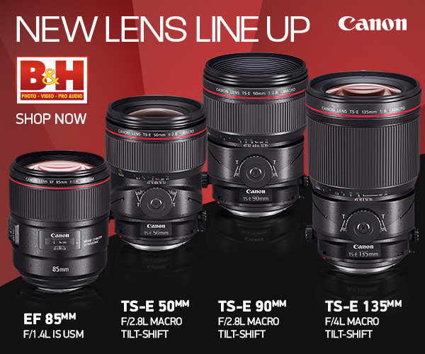 Canon EOS 6D Mark II Review - DustinAbbott net