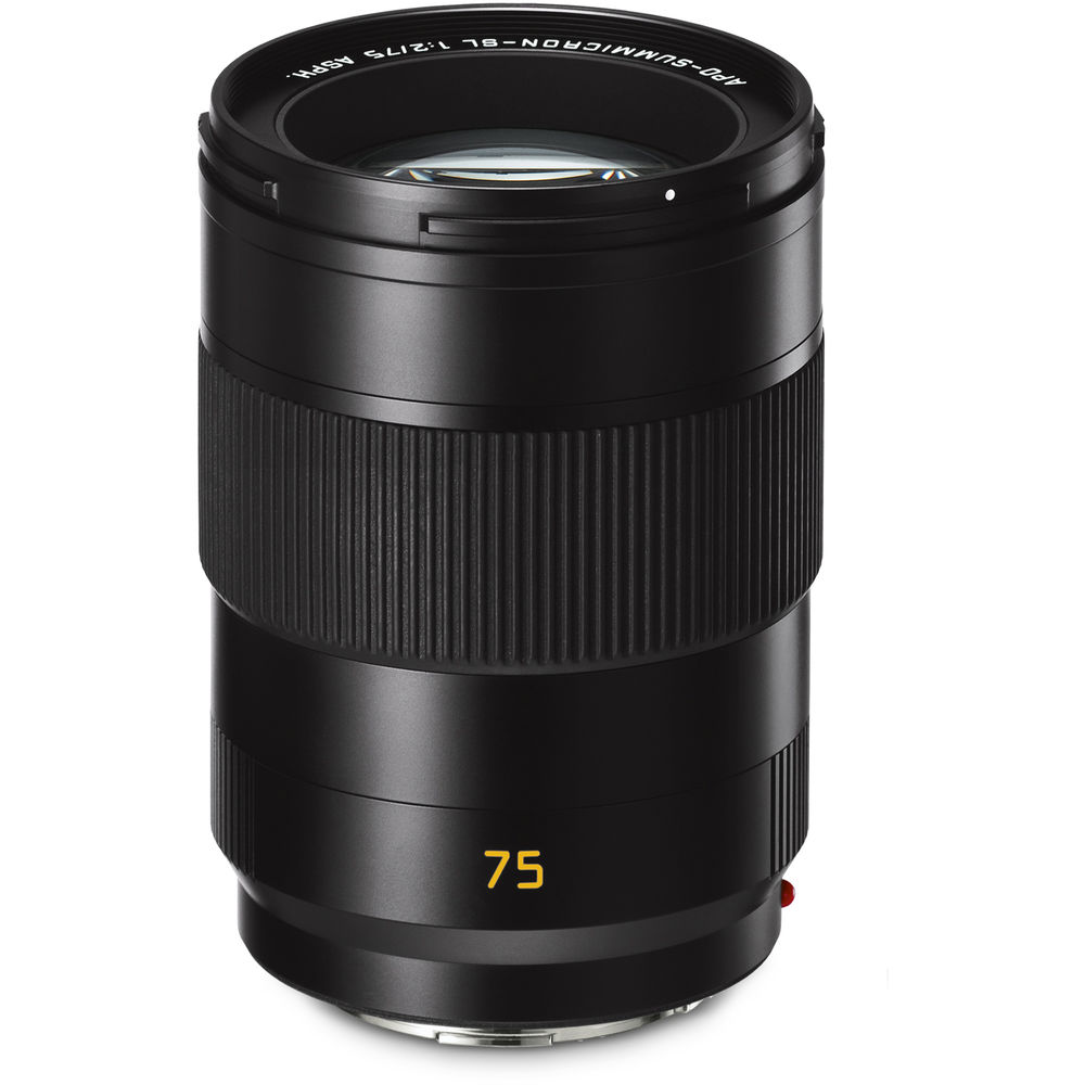 image of Leica 75mm f/2 APO-Summicron-M ASPH