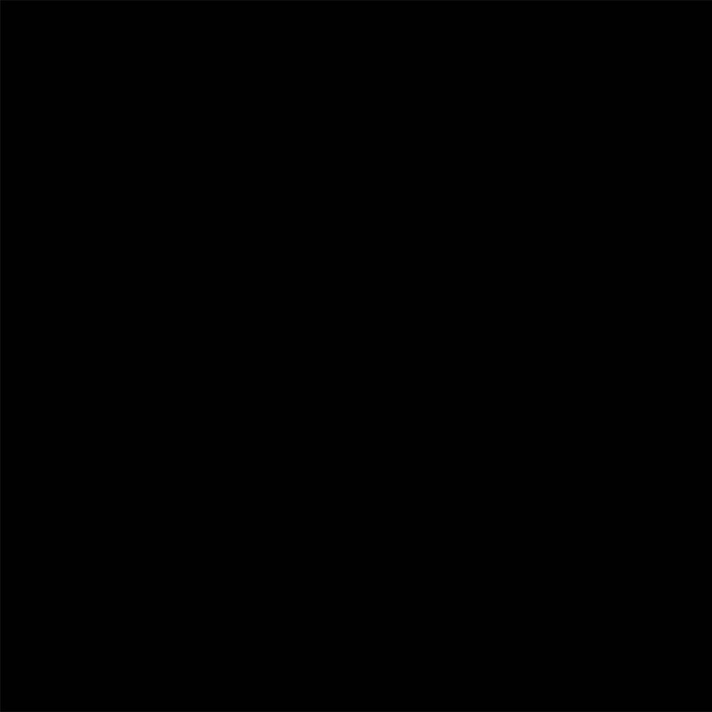 Savage Accent Solid Muslin Background (10 x 24', Black) SD2024