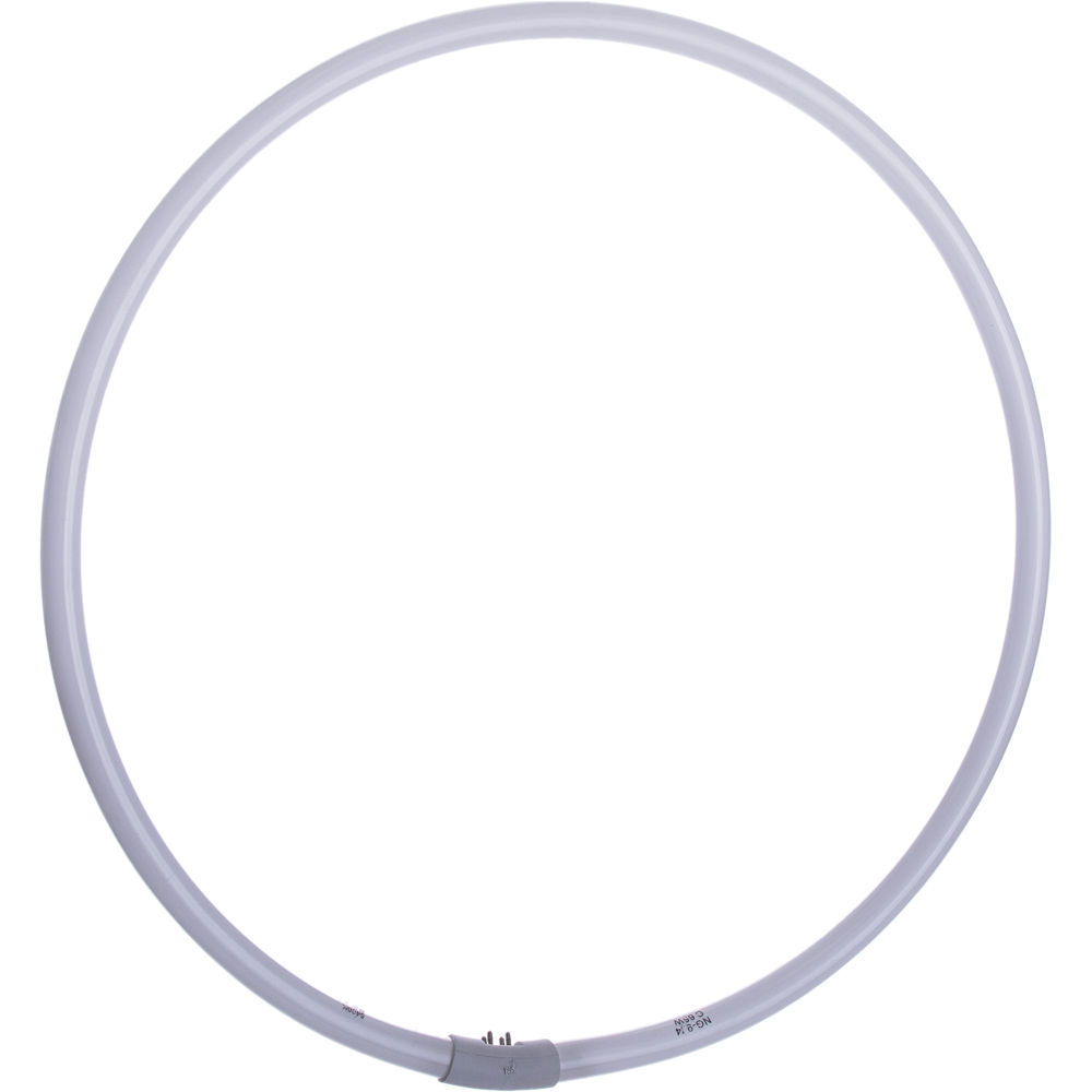 """Fluorescent Light Ring: Interfit 65W Fluorescent Ring Lamp For 19"""" INT497 B&H Photo"""