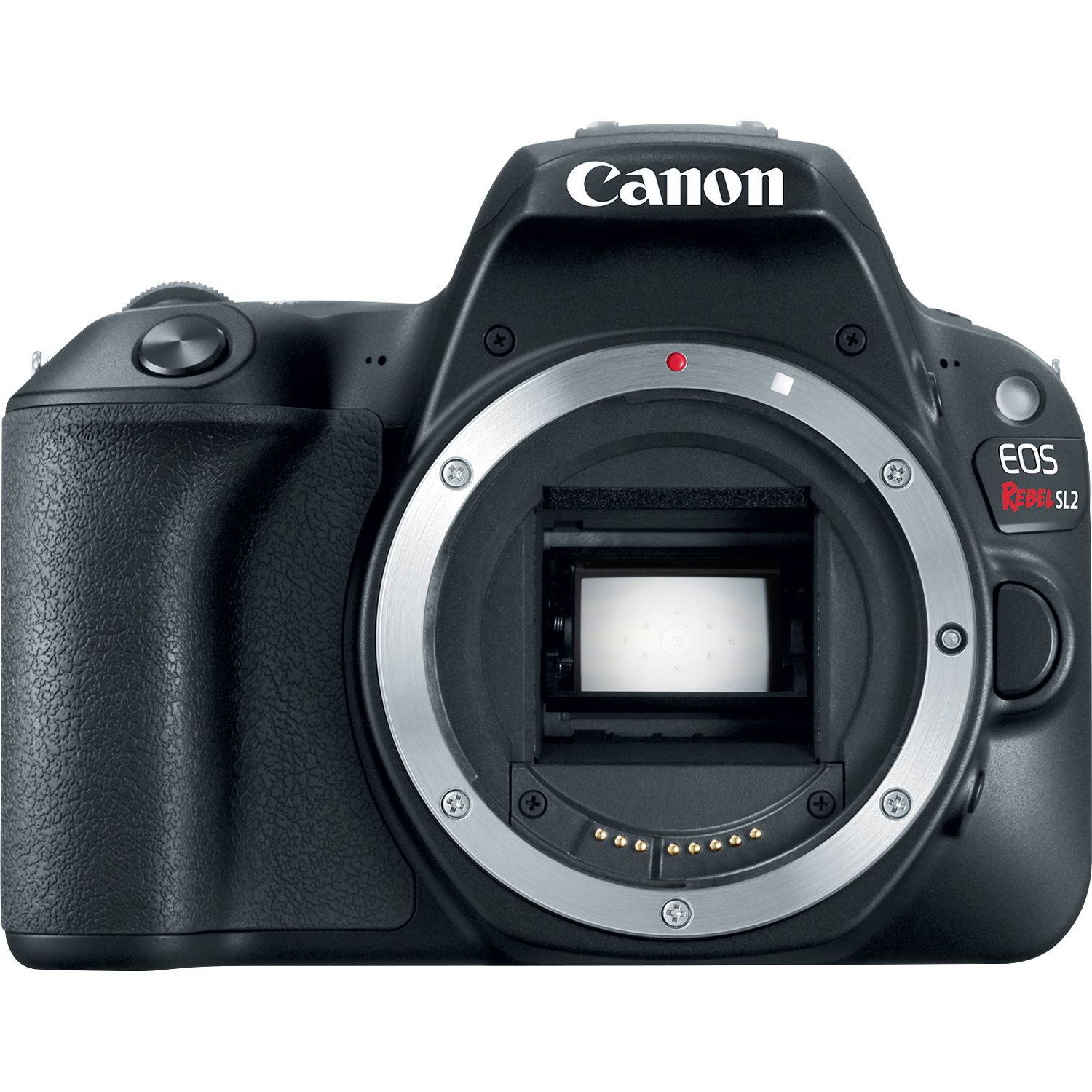 Used Canon EOS Rebel SL2 DSLR Camera Black Body Only