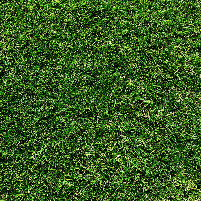 Westcott Green Grass Matte Vinyl Backdrop D0131 43x43 Vy