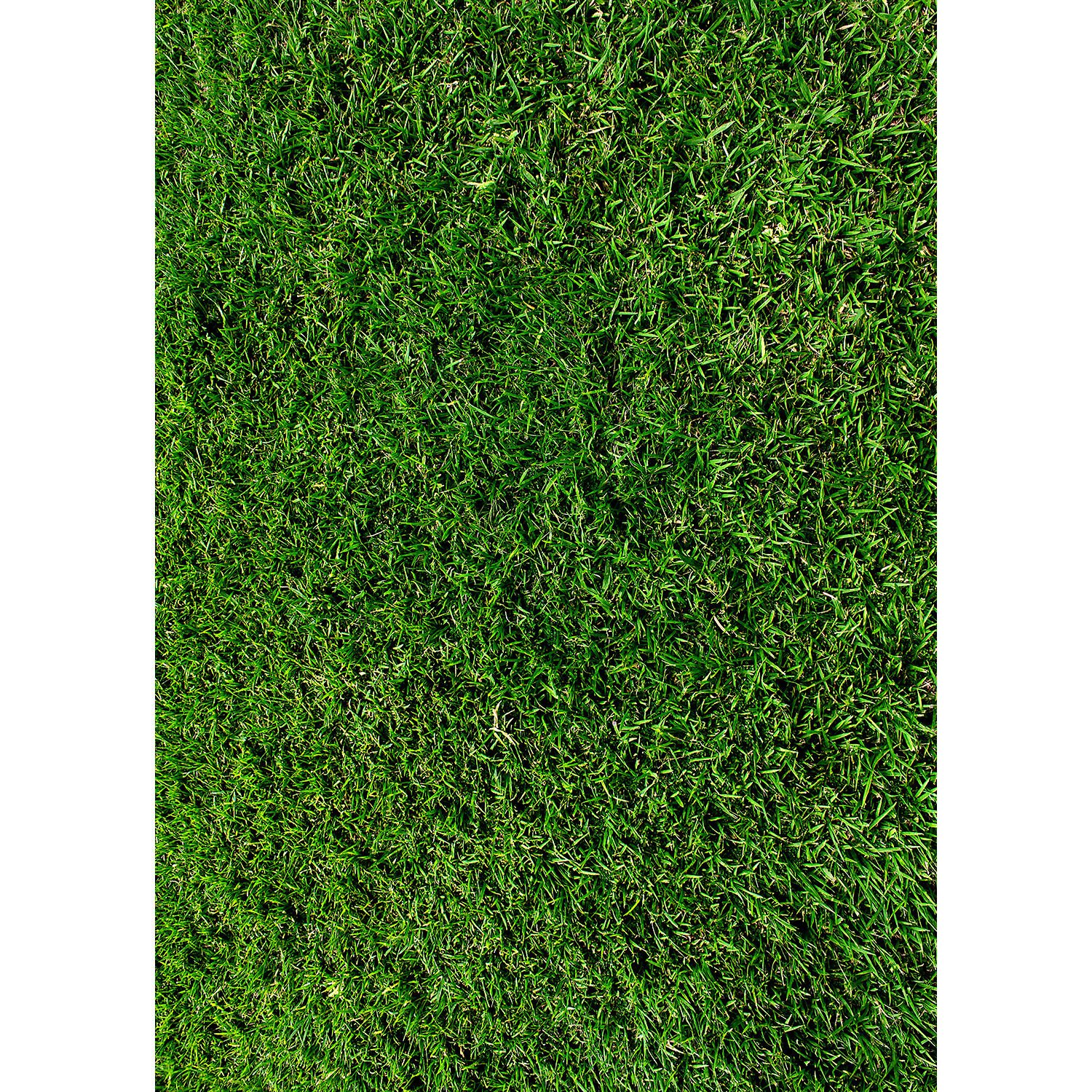how to make grass wall backdrop