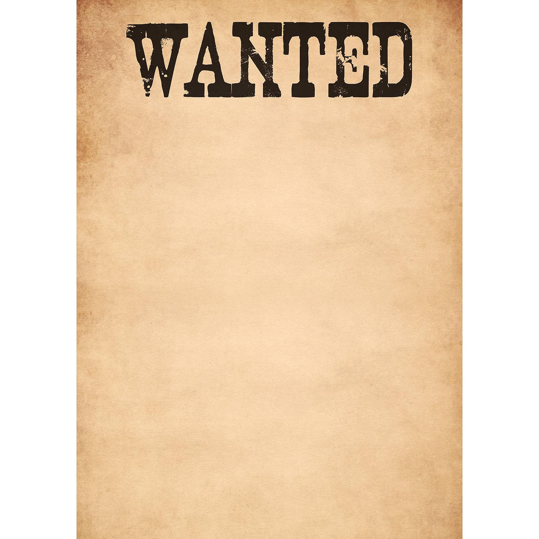 Westcott Wanted Poster Matte Vinyl Backdrop D0136 63x87 Vy Mc1