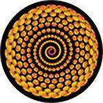 "Rosco Standard Color Glass Spectrum Gobo #86644 Spiral Bling (86mm = 3.4"")"