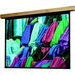 "Draper Artisan/Series E Motorized Projection Screen (42.5 x 56.5"")"
