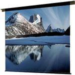 "Draper 113002 Ambassador Motorized Projection Screen (60 x 60"")"