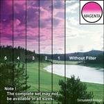 "Tiffen 3 x 4"" 4 Magenta Hard-Edge Graduated Filter (Vertical Orientation)"