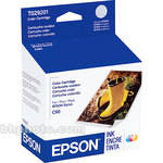 Epson Color Ink Cartridge for Stylus Color C60