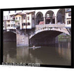 "Da-Lite 94344 Imager Fixed Frame Front Projection Screen (54 x 96"")"