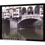 "Da-Lite 94351 Imager Fixed Frame Front or Rear Projection Screen (54 x 96"")"