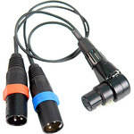 Remote Audio CAZXSTE XLR5F to XLRM3 x 2 Cable