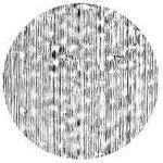 "Rosco Image Effects Black and White Glass Gobo - #33618 - Wood Grain (86mm = 3.4"")"