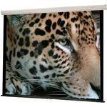 "HamiltonBuhl WS-W80  Manual Wall Front Projection Screen (80x80"")"