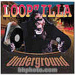 Big Fish Audio Sample CD: Loopzilla Underground (WAV and ACID)