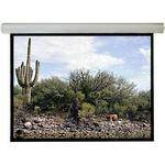 "Draper Silhouette/Series M Manual Front Projection Screen (96x96"")"