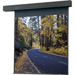 "Draper 115167 Rolleramic Motorized Projection Screen (96 x 96"")"