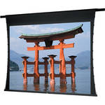 "Da-Lite 88174EF Fabric and Roller ONLY for the Advantage Deluxe Projection Screen (60 x 60"")"
