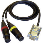 "Cable Techniques CT-DE15/2 Dual 3-Pin XLR-F to DE-15 Digital Mic Cable for 788T (30"")"