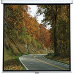 "ViewSonic PSC-002 Manual Square Format Projection Screen (60 x 60"")"