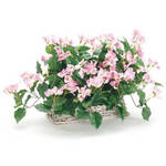 Bolide Technology Group BL1268C Wireless Flower Basket Hidden Camera