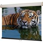 "Draper 52 x 92"" LUMA-2 HDTV Manual Projection Screen"
