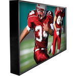 "Peerless-AV CL-42PLC68 Xtreme 42"" Sealed Flat Panel Screen"