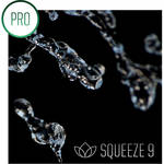 Sorenson Media SQUEEZE 9 PRO UPGRD FROM 6 - SHIPABLE