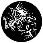 Rosco Steel Gobo #7790 - Paint Splatter