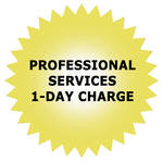 Promise Technology Professional Services 1-Day Charge
