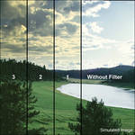 "Tiffen 4 x 5"" 1 Straw Soft-Edge Graduated Filter (Vertical Orientation)"