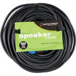 American DJ SK10012 Speakon to Speakon 12 Gauge Speaker Cable (100')