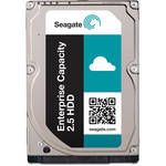 "Seagate 300GB Enterprise Performance 15K SAS 2.5"" Internal Hard Drive (OEM)"
