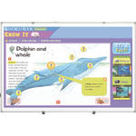 Best Rite 2G2KJ-25 5 x 8' Interactive Projector Board with Standard Gloss White Finish