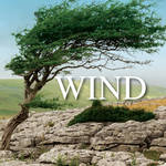 Sound Ideas Wind - Sound Effects Library (Electronic Download)
