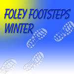 Sound Ideas Foley Footsteps Winter - Sound Effects Library (2 CD)