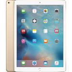 "Apple 12.9"" iPad Pro (256GB, Wi-Fi Only, Gold)"