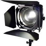 Zylight F8-200 Tungsten LED Fresnel