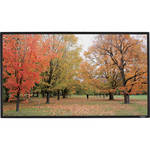 "GrandView Edge 49 x 87.2"" Fixed Frame Projection Screen"