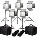 ikan Rayden Daylight 5-Point LED Light Kit with 5x RW10