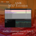 NuGen Audio AMB MXF Extension Module - Native Processing of PCM Audio in MXF Wrappers (Download)