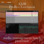 NuGen Audio AMB ProRes Extension Module - Native Processing of PCM Audio in ProRes or MOV Files (Download)