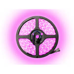 MARQ BrightStrip 5-300R LED Expansion Reel (16')