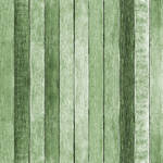 Westcott Rustic Wood Matte Vinyl Backdrop with Hook-and-Loop Attachment (3.5 x 3.5', Green)