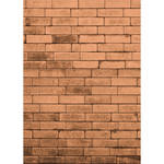 Westcott Brick Wall Matte Vinyl Backdrop with Hook-and-Loop Attachment (5 x 7', Orange)