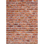 Westcott Classic Brick Wall Matte Vinyl Backdrop with Grommets (5 x 7', Multi-Color)