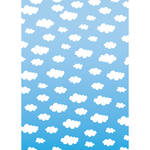 Westcott Classic Clouds Art Canvas Backdrop with Grommets (5 x 7', Multi-Color)