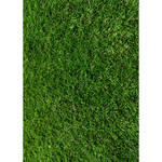 Westcott Green Grass Matte Vinyl Backdrop with Grommets (5 x 7', Multi-Color)