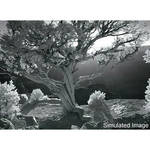 Singh-Ray 100 x 100mm I-Ray 690 Infrared Filter